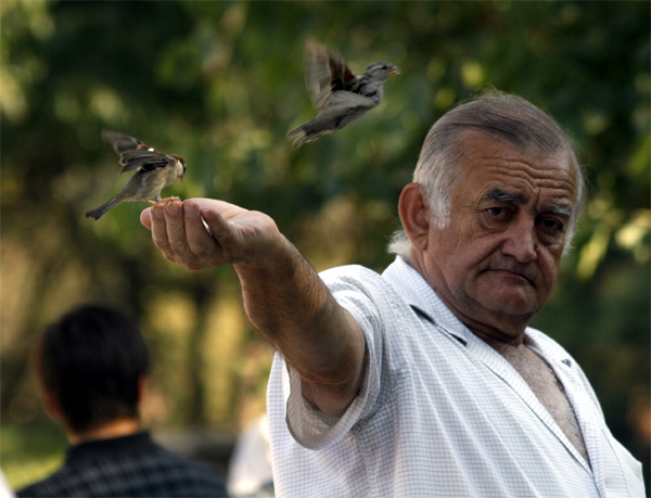 Stillferdig fuglemann ved Notre Dame, august 2009.